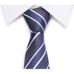 Cravate rayures diagonales (bleu-blanc)