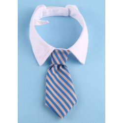 Tie for dogs and cats  Blue and beige stripes with white collar